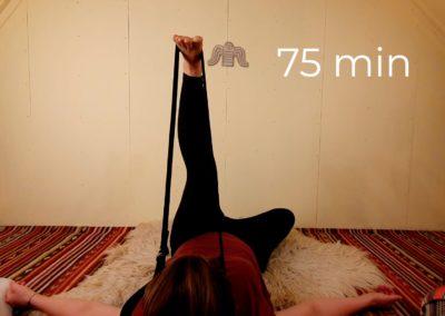 Hamstrings, hips & lower back